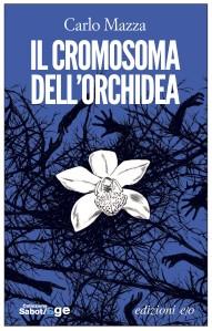 il-cromosoma-dellorchidea