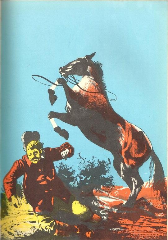 CavalloIllustrazione